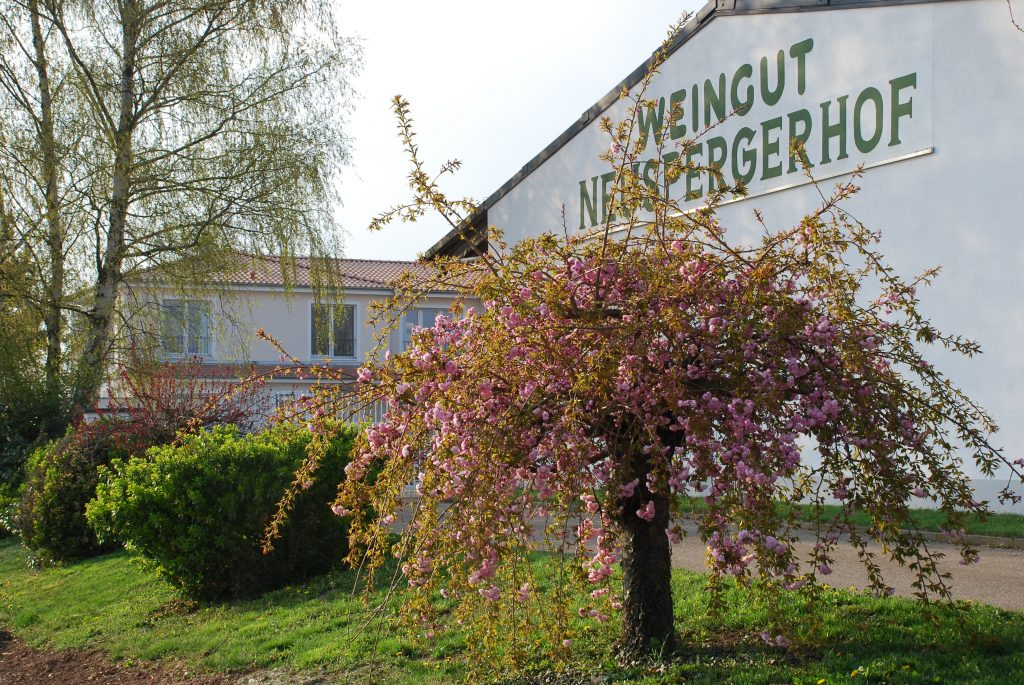 der Neuspergerhof in Rohrbach